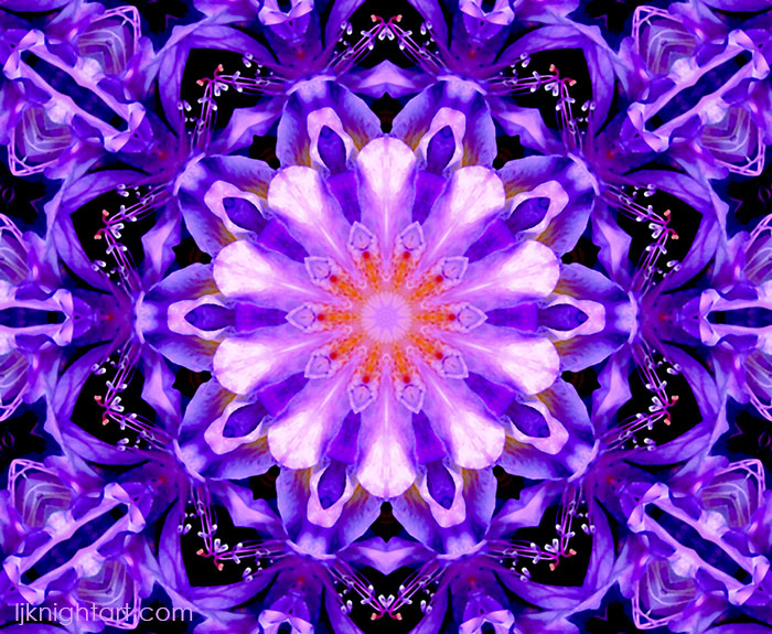 Purple abstract mandala art   by L.J. Knight