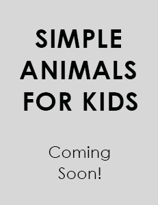 Easy animals colouring book - coming soon