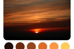 Colour Palettes by L.J. Knight