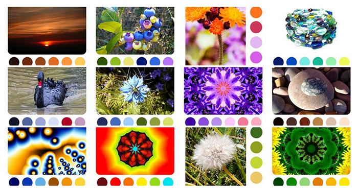 colour-palettes.png