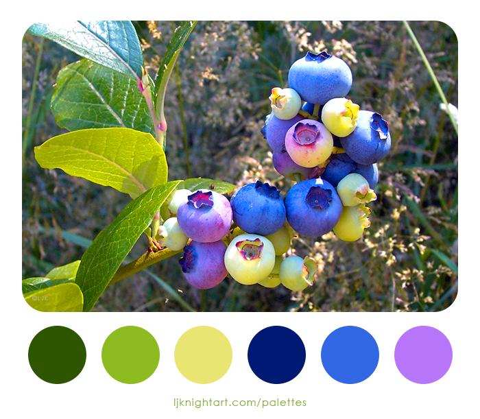 0002-Blueberries-Colour-Palette-LJKnight.jpg
