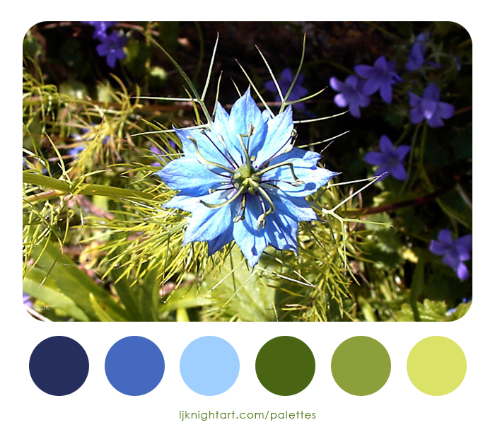 0006-Blue-Flower-Colour-Palette-LJKnight.jpg