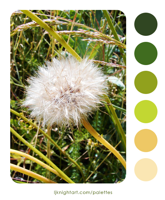 0011-Dandelion-Colour-Palette-LJKnight.jpg
