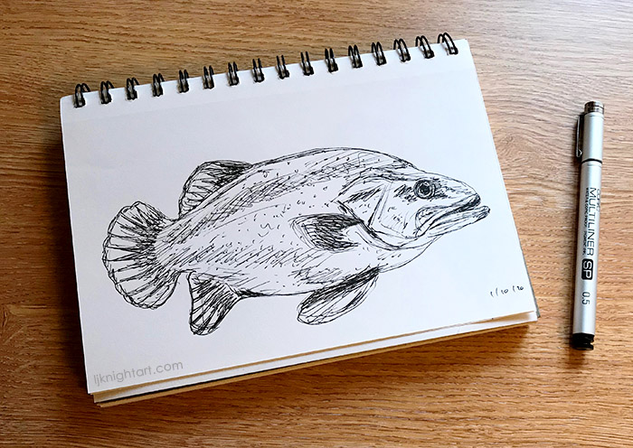 20-10-ljknight-inktober-fish-700.jpg
